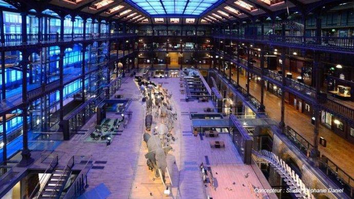 La Grande Galerie de l'Évolution à Paris